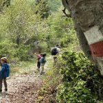 bambini che camminano su un sentiero in montagna