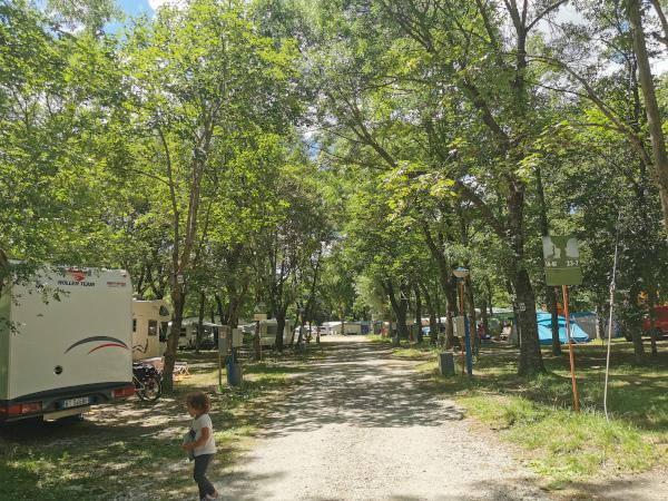 viale del campeggio con le piazzole ombreggiate