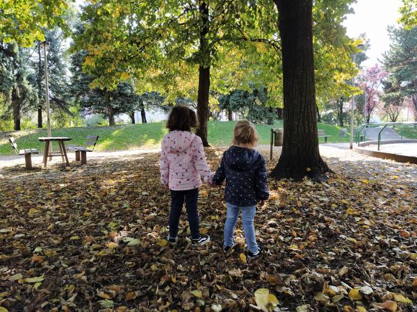 Foliage in camper: 5 mete per scoprire i colori dell'autunno vicino casa