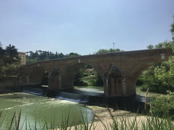 ponte vecchio e fiume savio