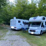 camper parcheggiati in mezzo al bosco